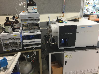 Agilent 6490 Triple Quad LC/MS